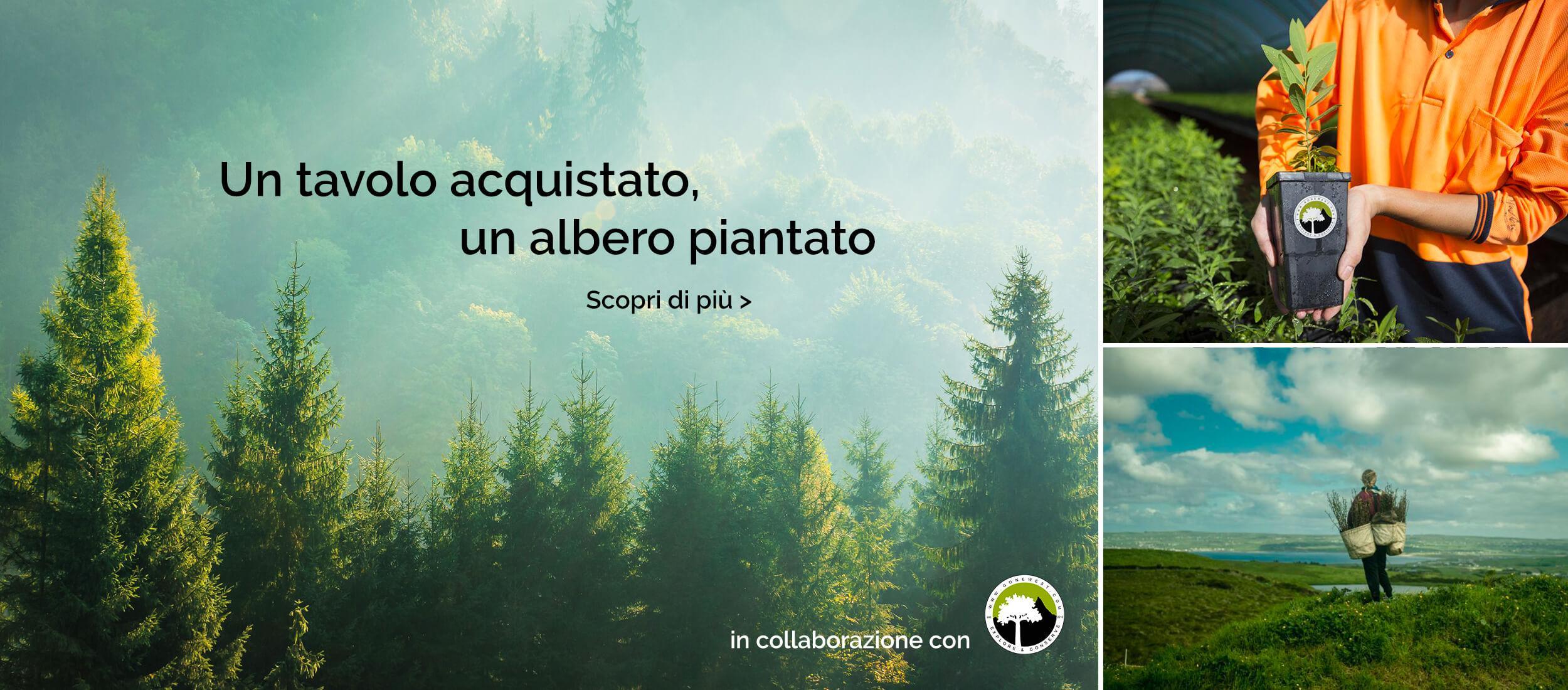 alberi_slide